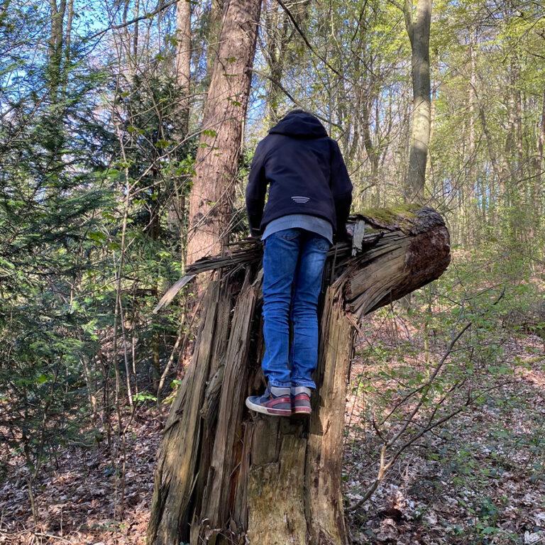 unendliche-Klettermöglichkeiten